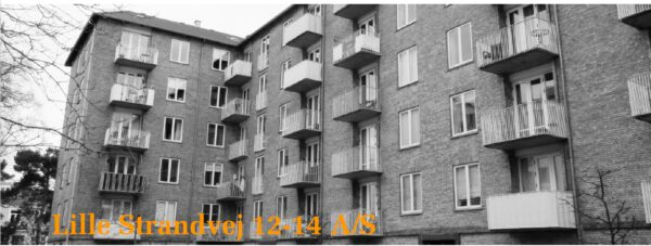 50 lejligheder fik nye vandinstallationer